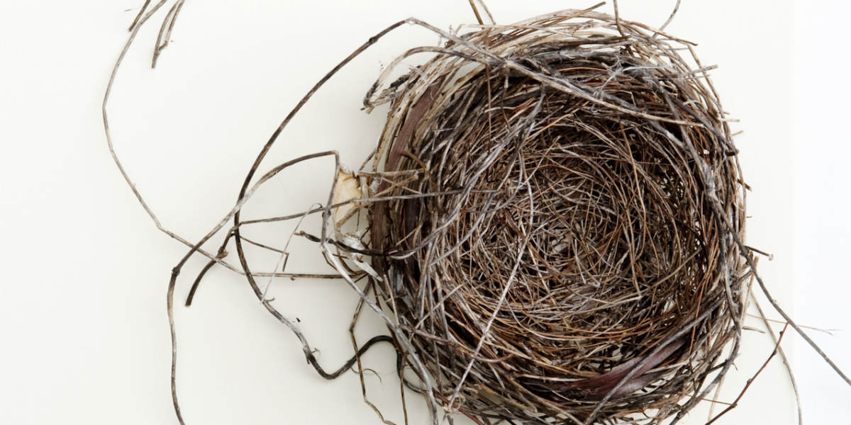 spruce-up-empty-nest-1200x600